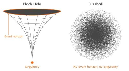 black hole and fuzz