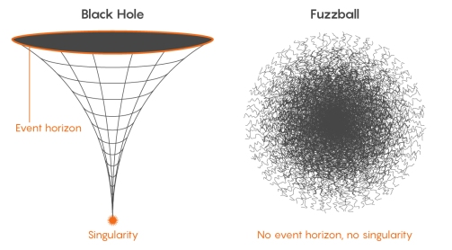 black hole and fuzz